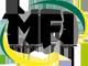 MFI Metall + Fastening Industrie GmbH